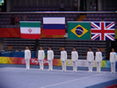 Medalist National Flags 85kg Beijing Olympics 2008.